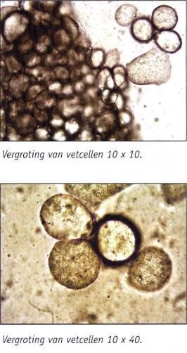 1_bio_herkenrode